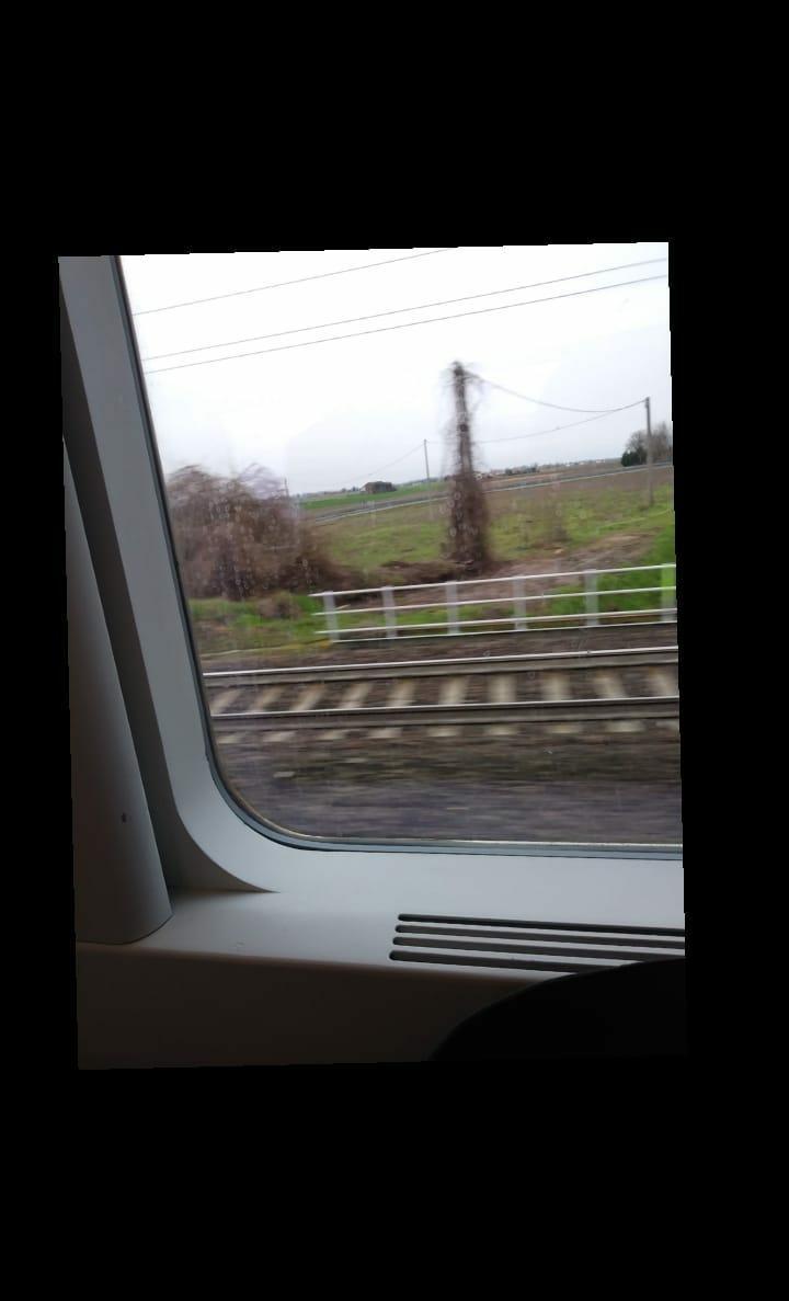 Quel treno